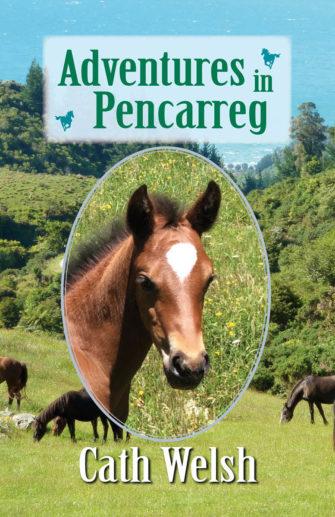 Adventures In Pencarreg
