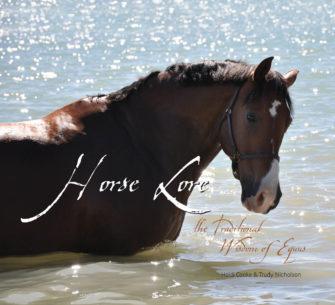 Horse Lore