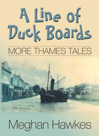 A Line Of Duck Boards