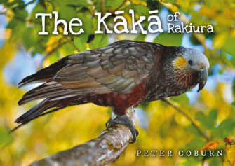 The Kaka Of Rakiura