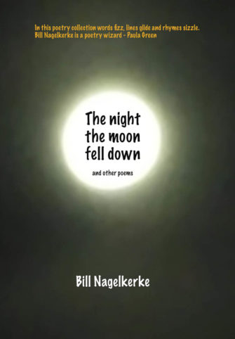 The Night The Moon Fell Down