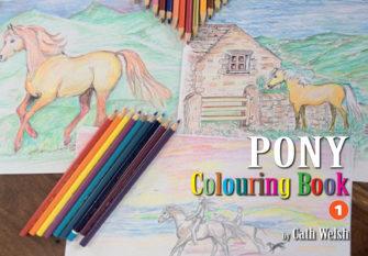 Pony Colouring Book 1