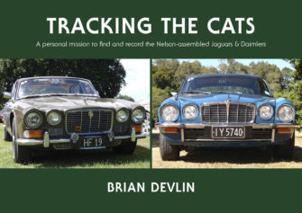 Tracking The Cats