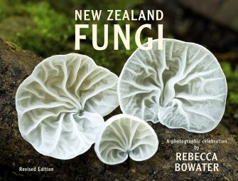 New Zealand Fungi – Revised Edition